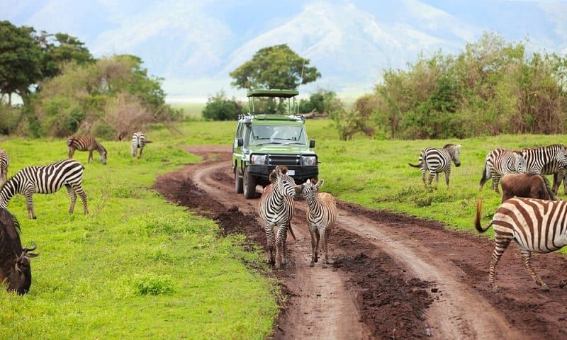 Lista De Deseos De Sudafrica 2