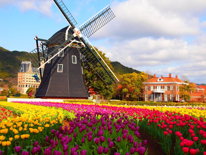 Festival de tulipanes y flores