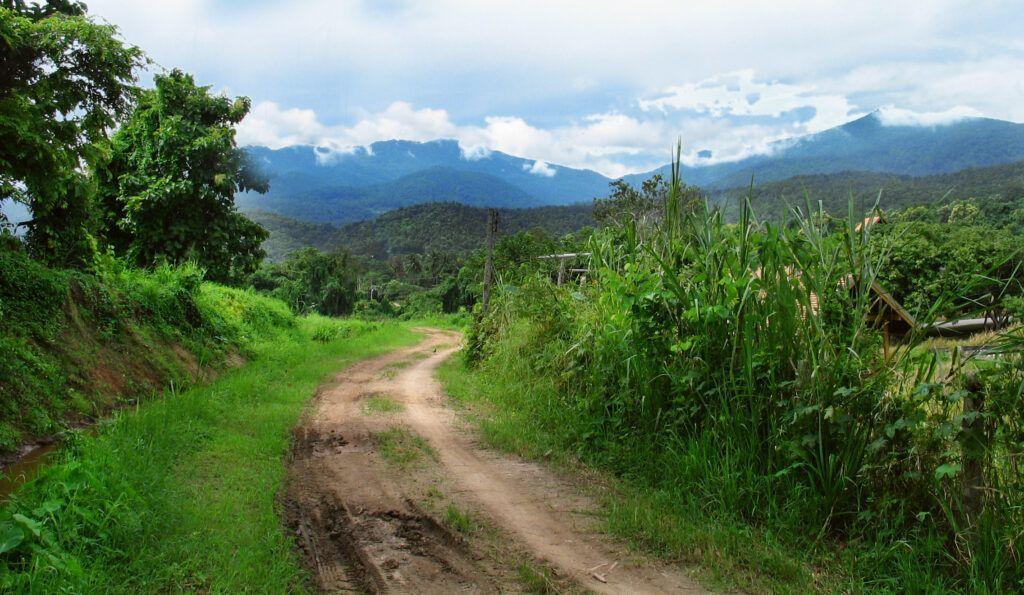 Trekking Del Parque Nacional Doi Suthep Pui 2