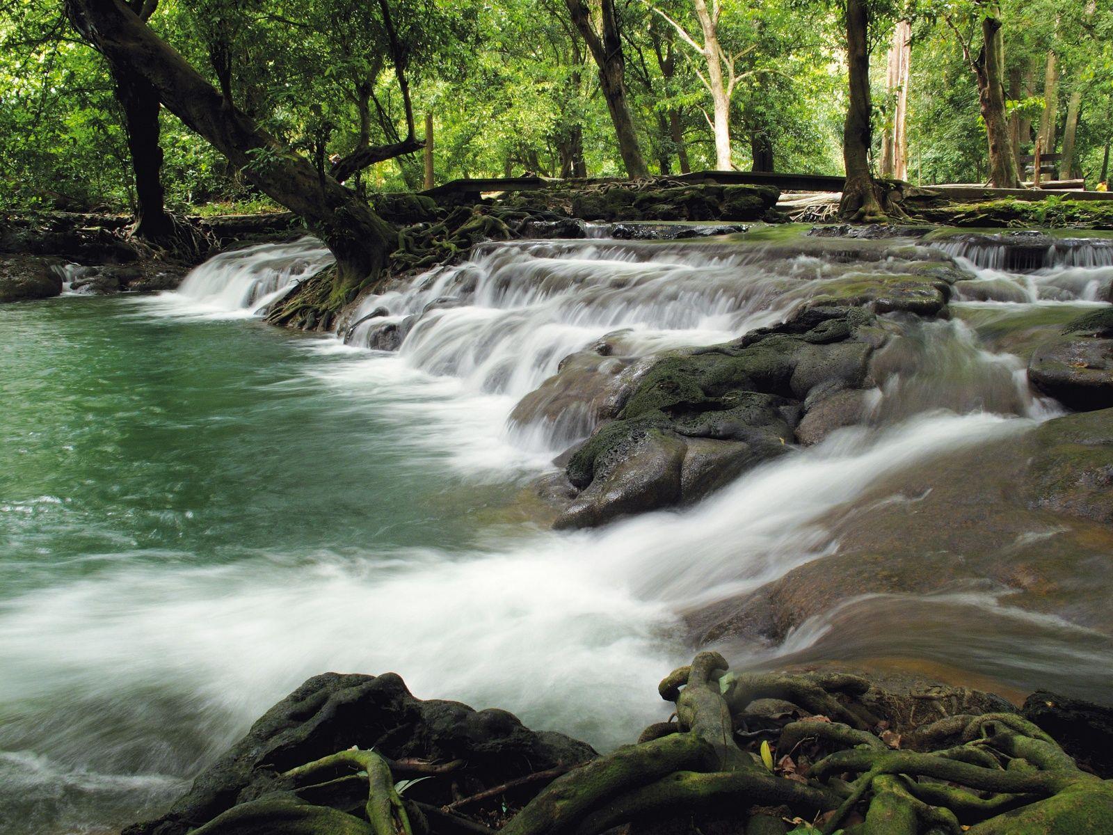 Parque Nacional Than Bok Khorani