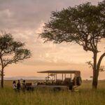 10 Increíbles Alojamientos De Safari Africano Que Debes Visitar Antes De Morir.