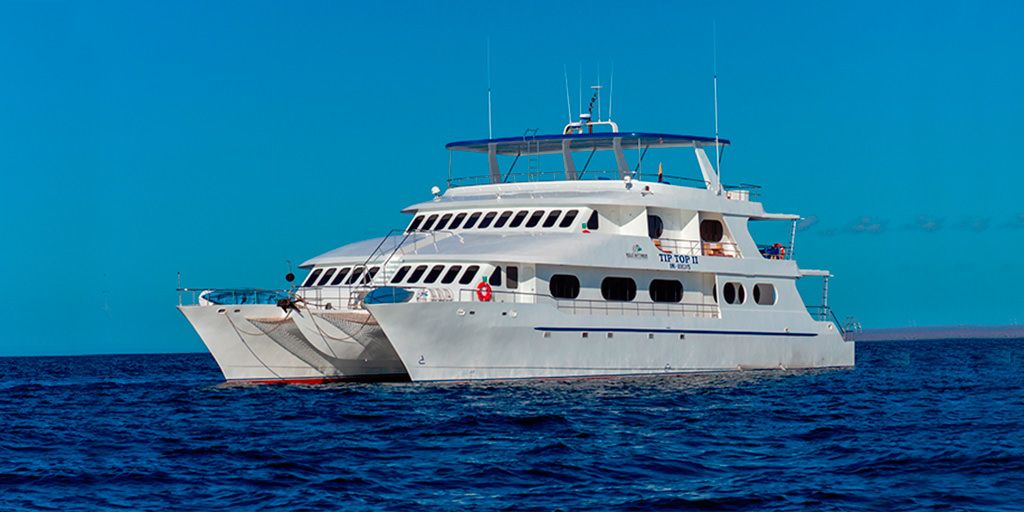 Tip Top II Crucero