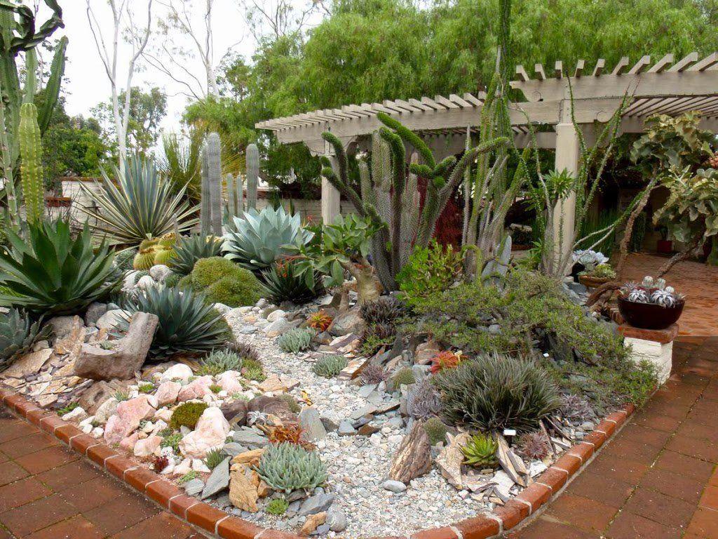 Snap Some Pics at Jardin de Cactus
