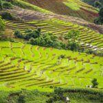 10 Cosas Increíbles Para Hacer En Chiang Mai
