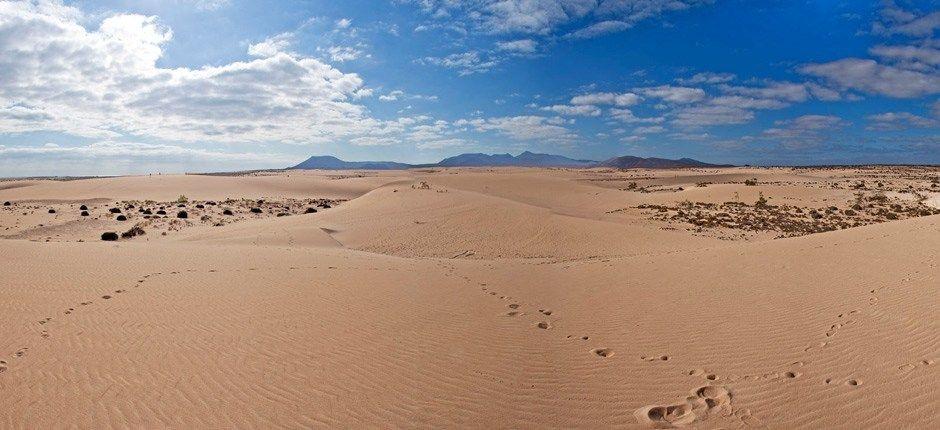 Cosas Que Hacer En Fuerteventura 2