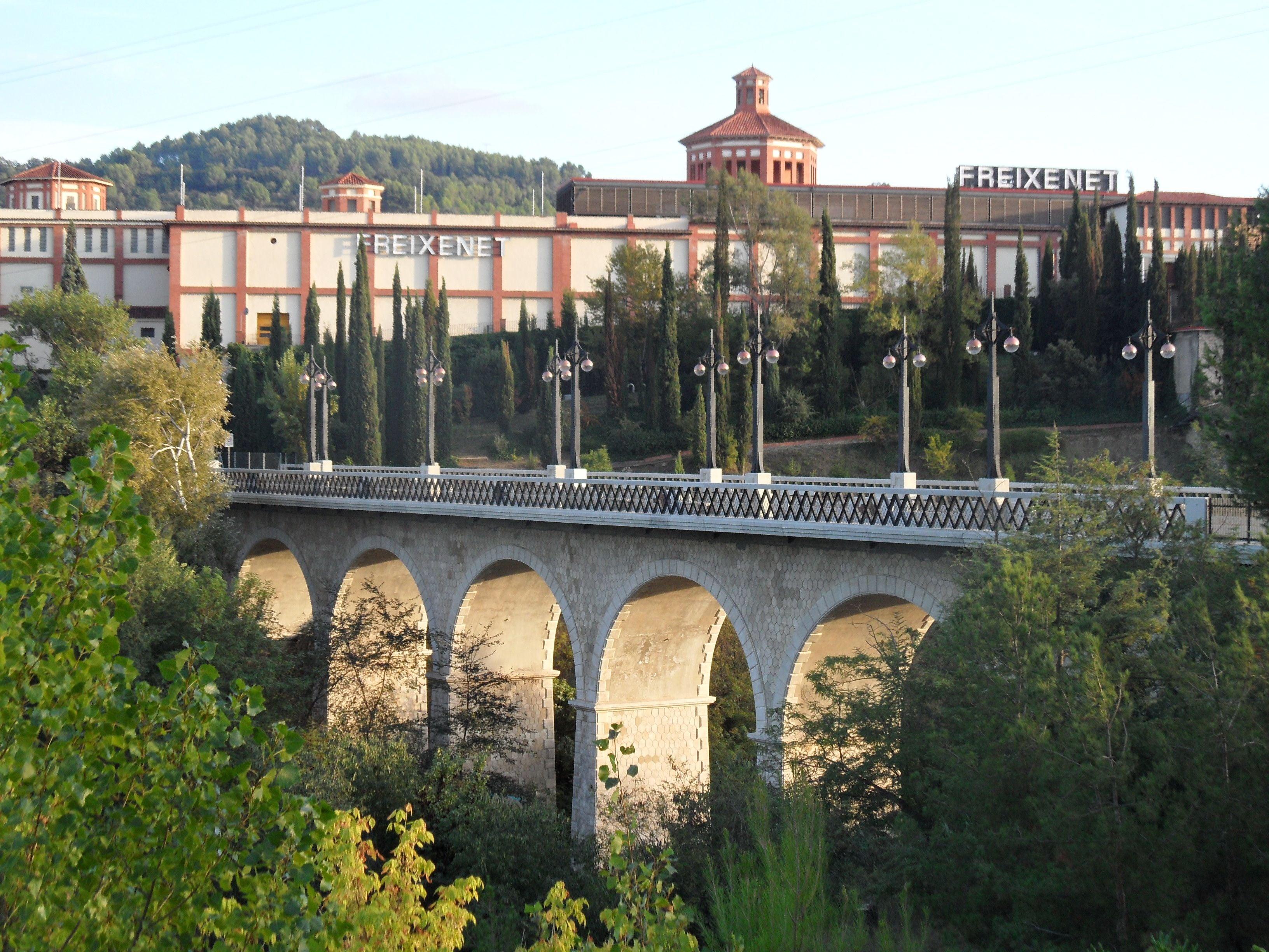 Puente de Sant Sadurní d'Anoia