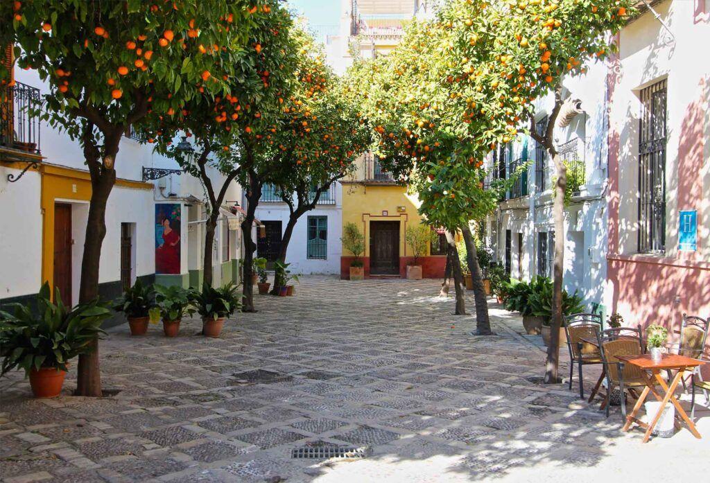 Donde Alojarse En Sevilla 2