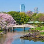 Cosas Que Hacer En Tokio