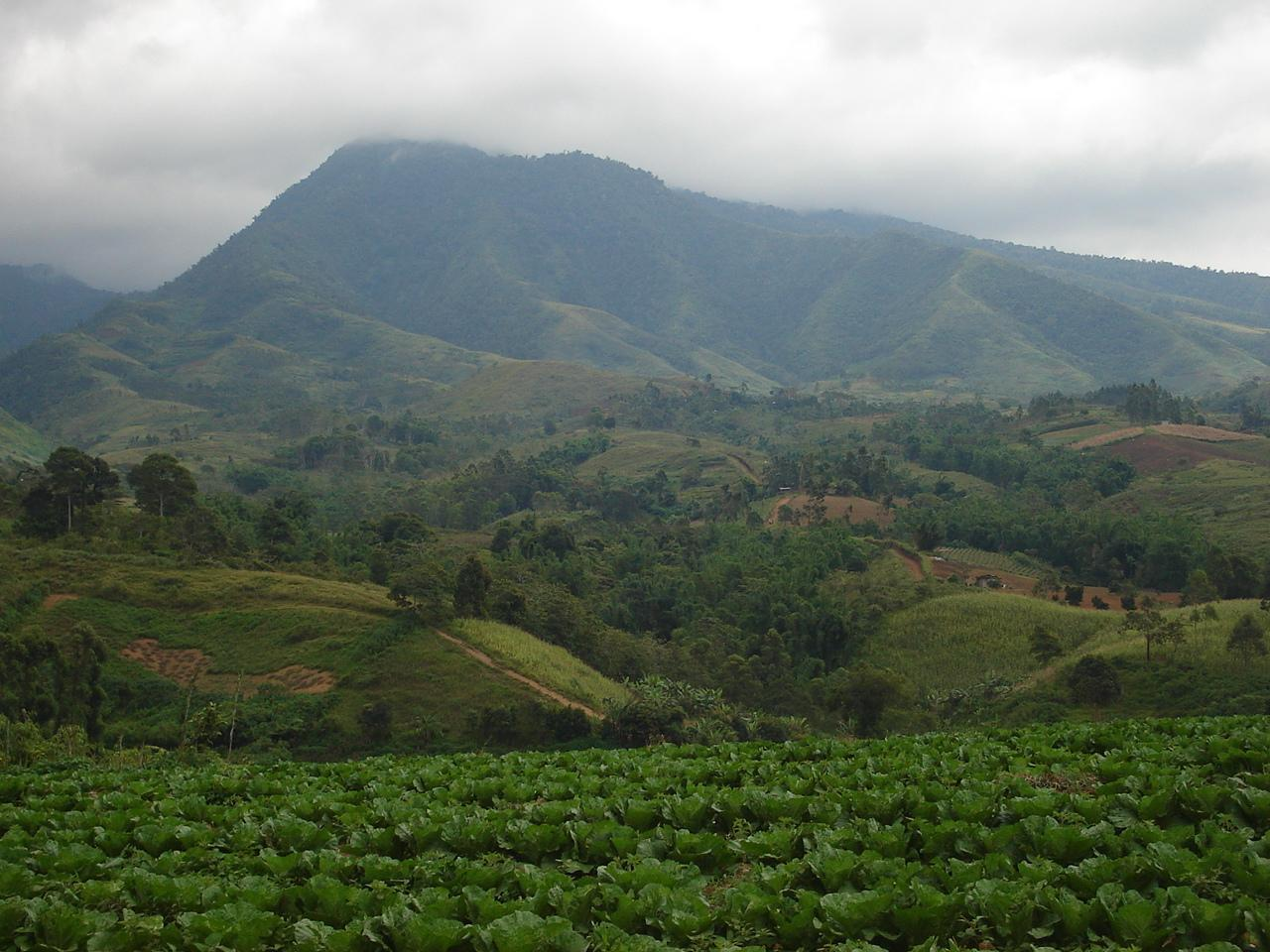 Monte Kitanglad Range