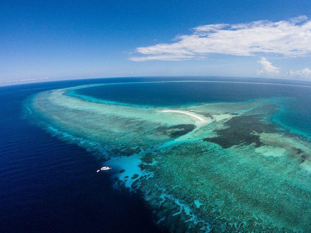 Los Mejores Sitios De Buceo De Filipinas 2