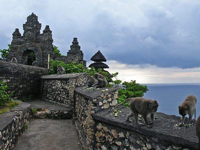 Lo Mejor Que Se Puede Hacer En Ubud Bali 2