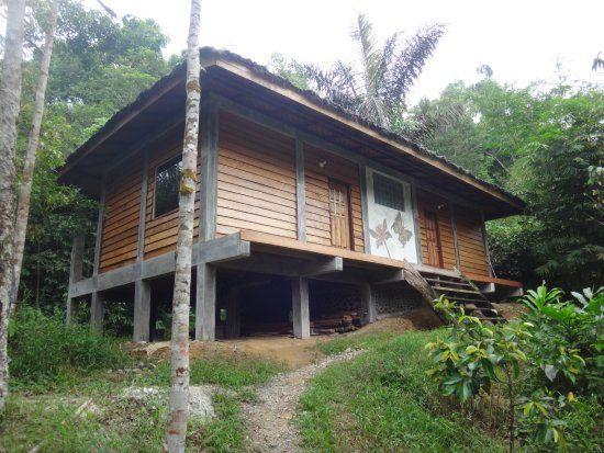 Casa de huéspedes de la selva Tropical