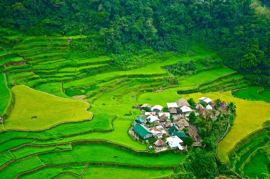 Terrazas de arroz con banaue